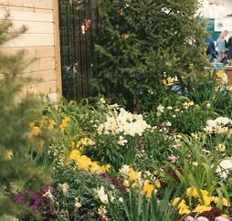 4 Colorado Garden And Home Show Feb 13 21 Citybuzz A